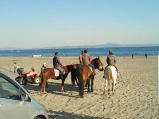 三浦の海に